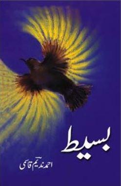 baseet-by-hashim-nadeem-qasmi-pdf-free-download.jpg