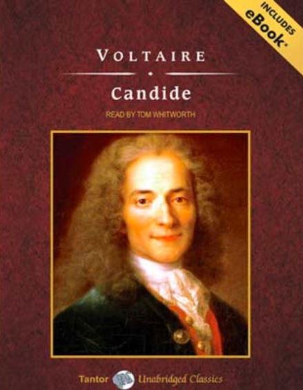 Candide,candide summary