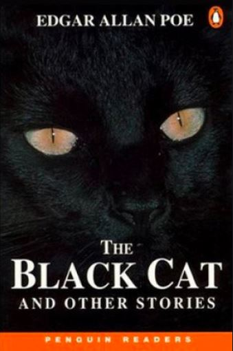 the black cat,the black cat summary